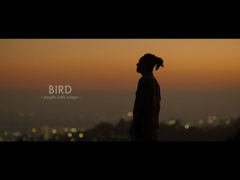 The BONEZ -Bird ~people with wings~-【Official Video】