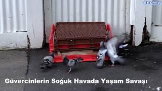 Ankara Valisi Vasip Şahin OKULLAR AÇIK. ANKARADA TATİL YOK ...
