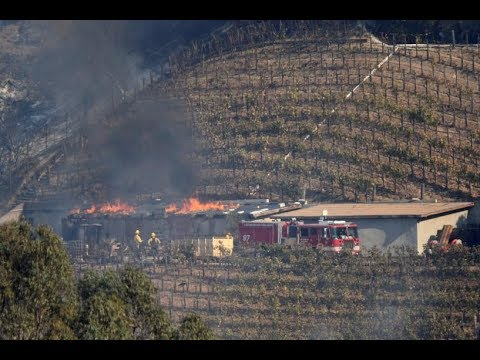 Wildfire burns homes, winery in L A 's posh Bel Air neighborhood