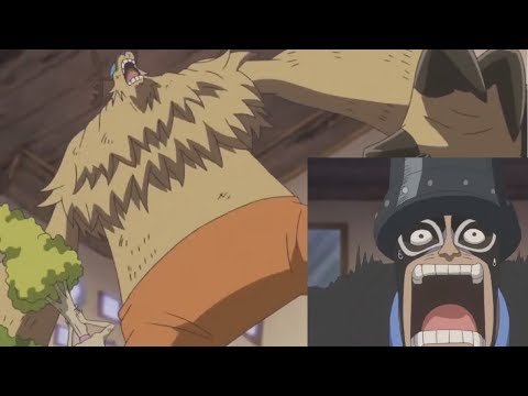 One Piece 814 Carrot and  Legendary Chopper vs Brulee  Big mom pirates