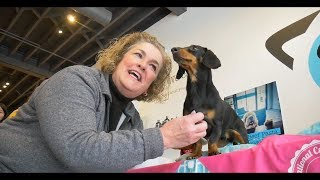 Crusoe Meet & Greet with Fans - in Support of National Cupcake Day for SPCAs thumbnail