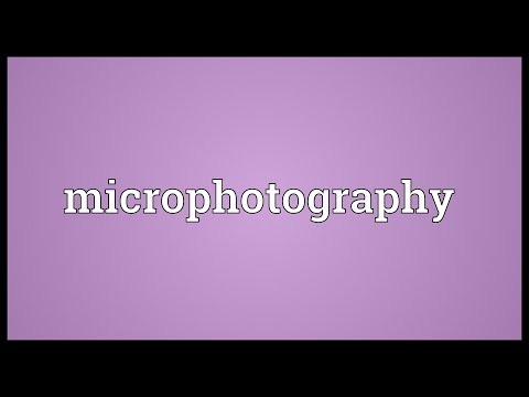 Header of microphotography