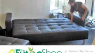 Lincoln Park Futon Sofa Bed From The Futon Shop