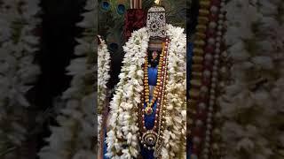 Shree ram nam nauka ,bhajan by swayam sidha bhajani mandal ,ravindra nagar nagpur