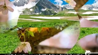 CÂND  VEȚI  VEDEA  CE  V-A  FOST  ASCUNS  ATÂT  DE  MULT  TIMP,  SPIRITELE  VOASTRE  SE  VOR  ÎNĂLȚA