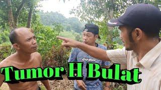 Tumor Haji Bulat