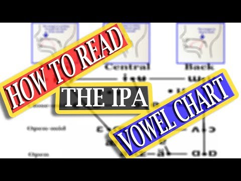 Learn to read the IPA Vowel Chart for any language