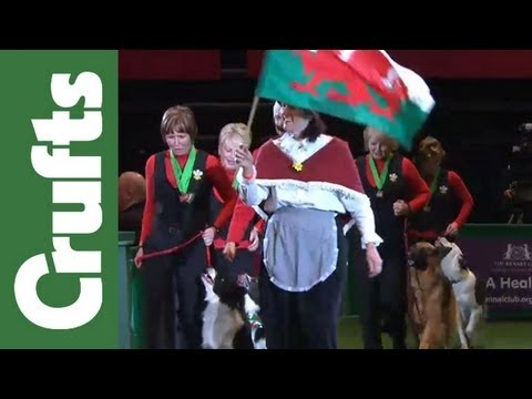 Parade of Obedience World Cup Teams - Crufts 2012