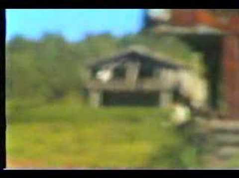 Boyabat Boyalı KöyüYaylası Davul Zurna boyabat57.com