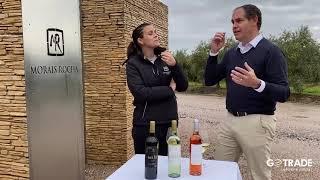 Vinhos Sei Lá - Vinícola Morais Rocha em Portugal