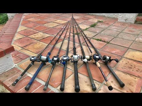 YELLOWTAIL ARSENAL!