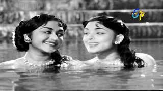 Jalakalatalalo Full Video Song   Jagadekaveeruni Katha   NTR   B. Saroja Devi   ETV Cinema