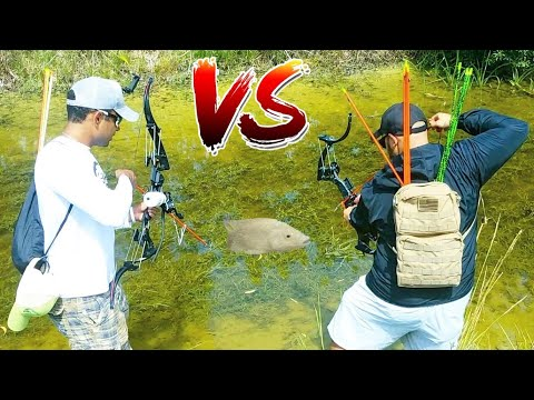 HI-TECH BOWFISHING  For FISH FOOD! *Epic CHALLENGE*