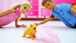 Barbie ve Ken eve orman kedisi alıyorlar! Çocuk videosu