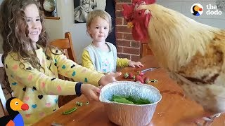 Little Girls Love Taking Care Of All Their Farm Animals | The Dodo