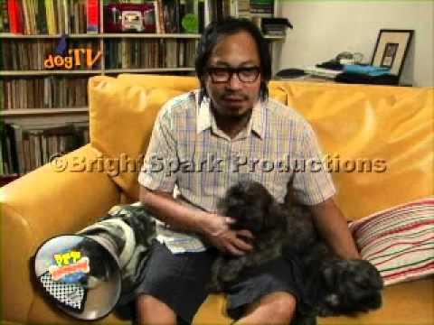 dogTV's dogSTAR s1 ep9: Lourd de Veyra