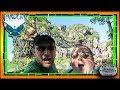 Pandora-The World of Avatar | Animal Kingdom at Walt Disney World (Part 1)