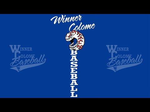 Madison Bulldogs vs Winner/Colome Royals (State B Legion Tournament)