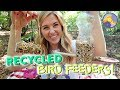 How to make recycled bird feeders! | Maddie Moate (Ad)