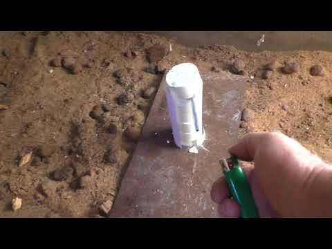 Дезинфекция погреба перед закладкой продукции