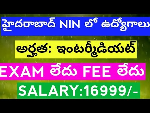 Data Entry Operator Jobs Recruitment 2017 Notification in NIN Hyderabad |govt jobs