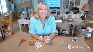 How To Make Seashell Jewelry Bracelets