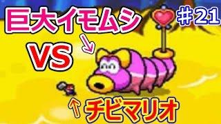 マリオ&ルイージRPG3♯21 賢者からスターワクチンを奪え!巨大イモムシVSチビマリオ!!