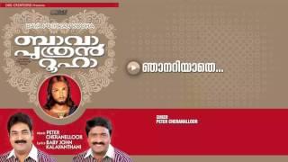 Njanariyathe | Sung by Peter Cheranalloor | Bava Puthran Rooha HD Song