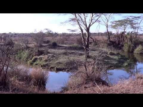 Safari en Tanzanie Planete Evasion du 3 au 8 novembre 2013
