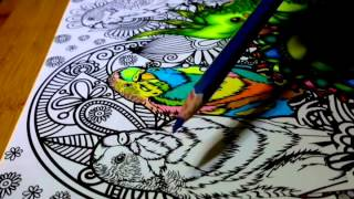 How I color using markers and pencils