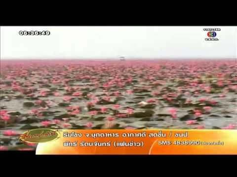 เรื่องเล่าเช้านี้ สื่อนอกยก ทะเลสาบหนองหาน สวย-แปลกที่สุดอันดับ2ของโลก(14ก.ค.57)