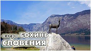 Словения. Озеро Бохинь / lake Bohinj Slovenija / Bohinjsko jezero, Slovenija(озеро Бохинь, Словения (Bohinj, Slovenija) - альпийское озеро в окружении гор и альпийских лугов. Оно расположено..., 2015-06-02T20:14:11.000Z)