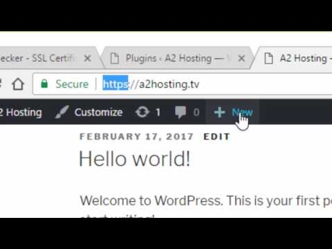 Best Wordpress Hosting with Free SSL Certificates, September 2019 4