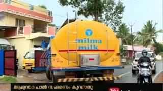 Intense heat  in kerala Affect Dairy Farmers in Kerala |  തിരിച്ചു വിളിക്കാം ഞാറ്റുവേലകള്