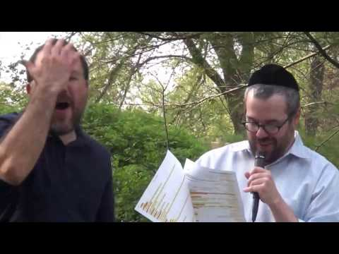 Judaisms: A Twentyfirstcentury Introduction to Jews and Jewish Identities