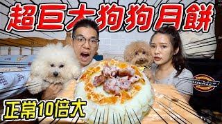 【震撼】製作巨型狗狗月餅給愛犬吃 愛犬反應竟超意外..?『正常10倍大』【希露弟弟啃雞腿】比熊 貴賓 Bichon Frise Poodle