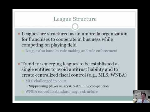 The Professional Sport Industry