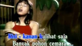 Naik Naik Ke Puncak Gunung - Lagu Anak Indonesia