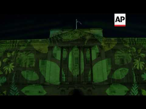 Buckingham Palace transformed by rainforest projection