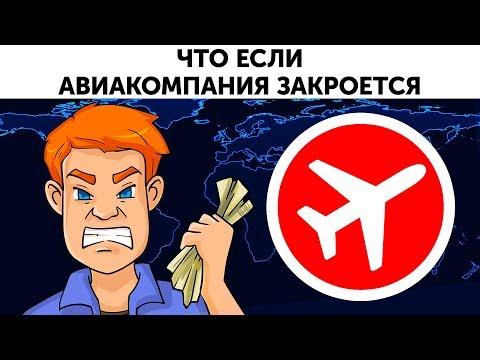 Что случится, если ваша авиакомпания закроется