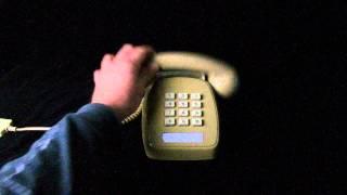 Ring Test - 1980