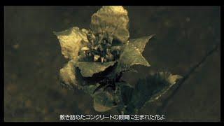 2000年2月2日 リリース 15th Single「MILLENNIUM GREETING」より ーーーーーーーーー 作詞:真木須とも子 作曲:タジマタカオ 編曲:タジマタカオ ーーー...