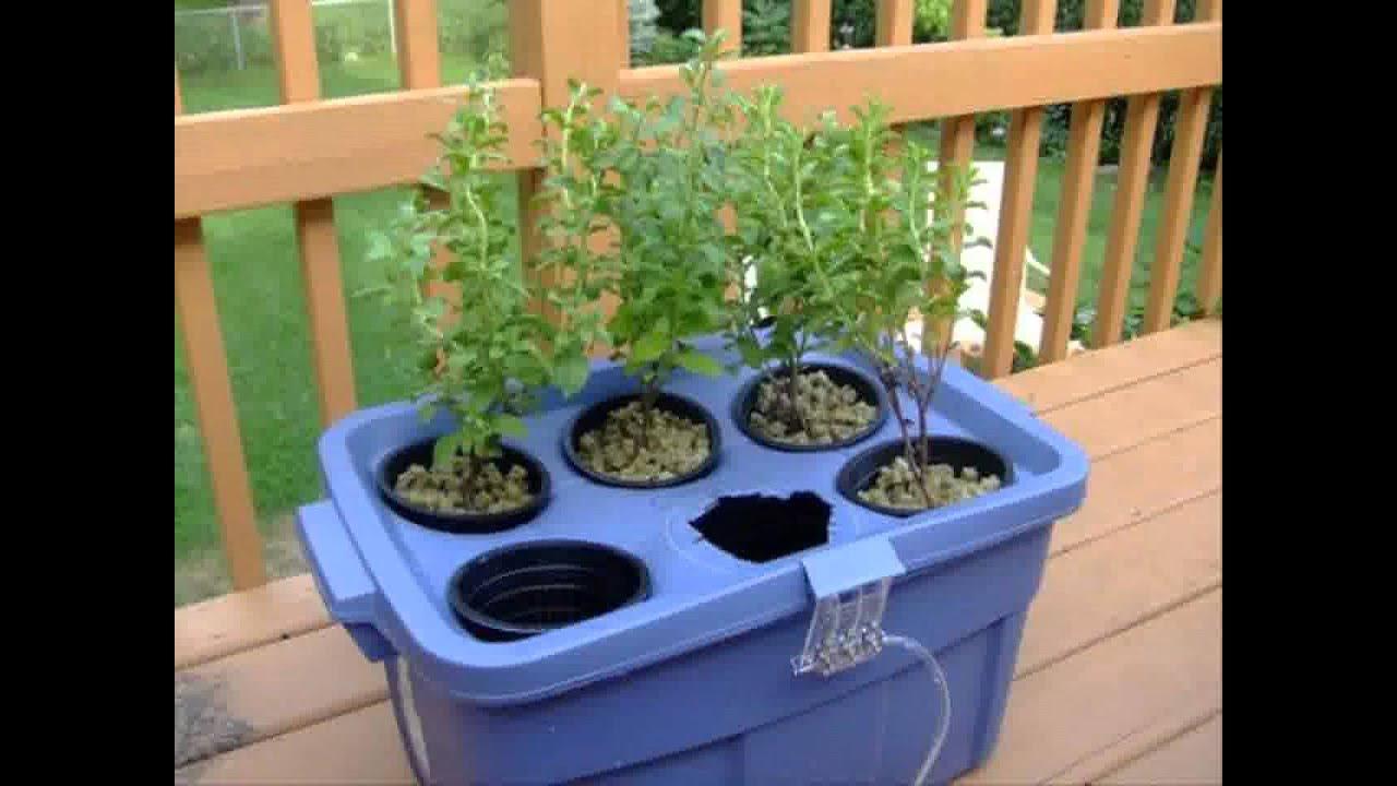 Small Home Hydroponic Garden Ideas