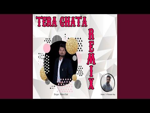 Tera Ghata (Remix)