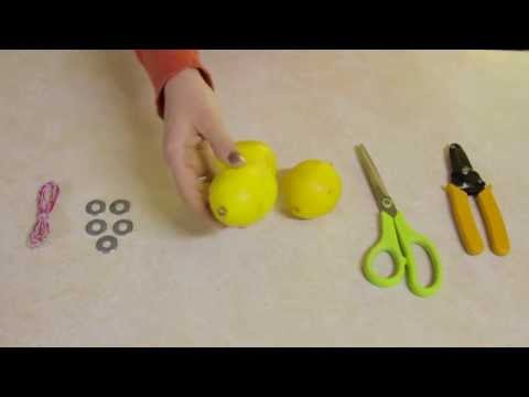 Lemon Battery Homeschool Science Experiment