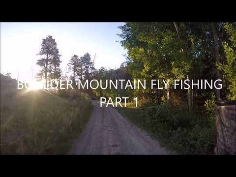 Boulder Mountain Fly Fishing Part 1 : Camp Pond