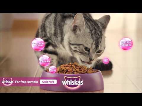 whiskas-cat-food