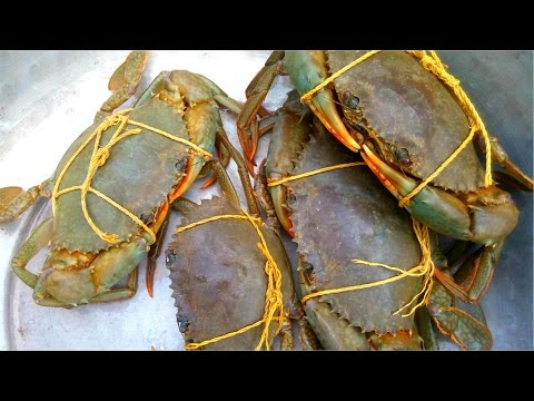 How To Cook Mud Crab Village Style    Catch And Cook Crab    Awesome Crab Recipe    Must Watch Video