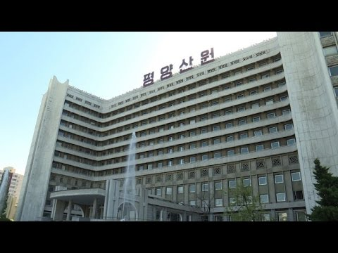 N. Korea shows off hospital care inspired by Great Leaders