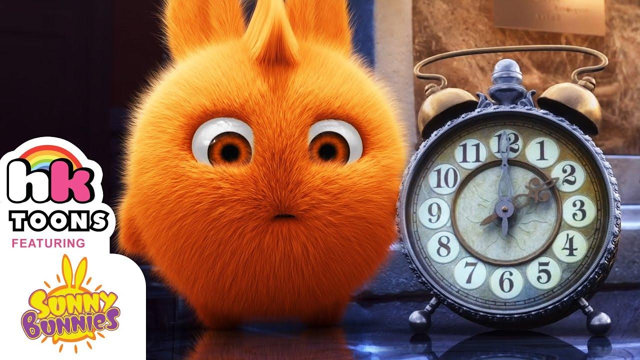 Tik Tok Clock   Sunny Bunnies Compilation   Funny Cartoons for Kids   HooplaKidz Toons
